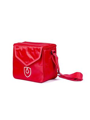 Túi giữ nóng lạnh Moriitalia 24*21*13 cm - ELD-D301