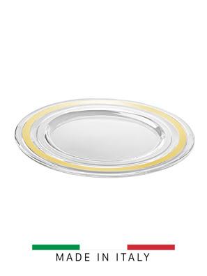 Bộ đĩa thủy tinh Vidivi Baguette 2 cái 32cm vòng mạ vàng - 65271M