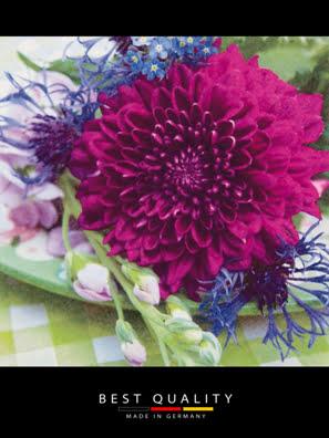 Khăn giấy ăn trang trí bàn tiệc ti-flair Tissue napkins DESIGN 33x33cm - 340325